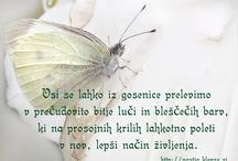 Pozitivčice / Življenje res si lepo. http://nastja.klevze.si