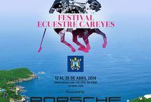 Festival de Polo Careyes by Porsche / Durante una semana fuimos testigos de una de las copas de polo más exclusivas del país, acompañados de nuestros inigualables autos. / by Porsche de México