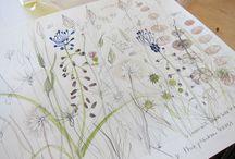 Sketchbook/creative journal / by Fiona Jones