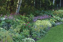 Border Gardens