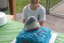 Torta shark