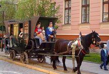 Železnice, koňská dráha