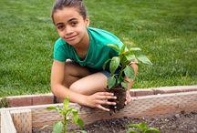 Growing Little Gardeners