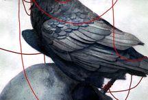 Raven/Crow