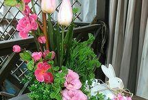 húsvéti szépségek