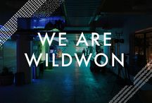 Wildwon first website