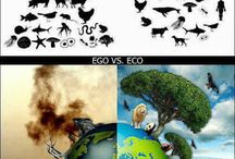 Ecology | Sustainability