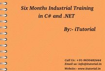 6 Months Internship Programs C#.Net