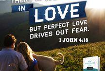 Love / by NIV Bible by Zondervan
