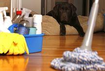 Casa / Housekeeping