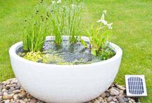 jardin bassin rond