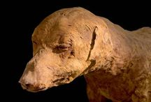 Dogs : Ancient Egypt