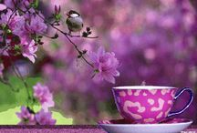 relax its tea time