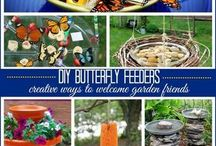 Butterfly Garden and ideas