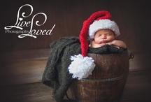 Photography Christmas Newborn / by Neoshea Bergman