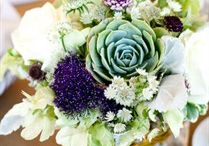 Succulent Wedding / Succulent Wedding theme ideas and things to make it happen.