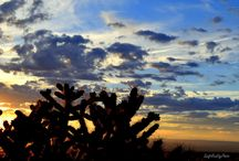 New Mexico Hiking / Hiking Trails in New Mexico from New Mexico Healthy Living
