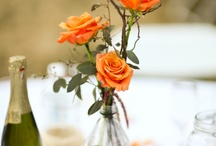 Wedding ideas  / by Trish Badowski
