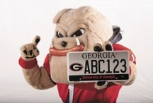 Holiday Spirit / Goooo Dawgs, sic'em. A board to cheer on the dawgs!