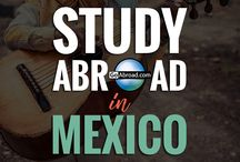 Study Abroad ✈️ / This is what dreams are made of! From short-term programs to semester and full year long study abroad programs, we've got all the best opportunities and study abroad tips to rock your time abroad.