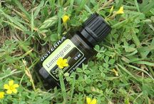 Oil Love / DoTERRA info and recipes