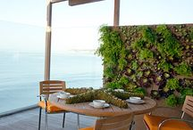 Garden Designs / Get inspired to create your dream garden with these ideas.  / by Sunset Magazine
