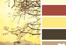 《 palettes 》