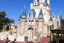 Disney Parks / Every Disney Park shows up here but if you like certain ones check my other boards for Walt Disney World Epcot Hollywood Studios. Animal Kingdom Disneyland The Magic Kingdom in Florida or any other