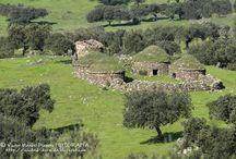 Rural Patrimonio y Paisajes
