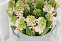 decoratie bloemen en planten