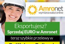 Amronet.pl Biznes