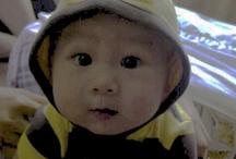 Nephew