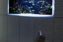akvárium, terrárium