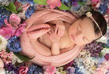 Newborn - Fotógrafa Lindsay Walden