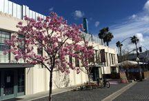 Los Angeles tips / Tips på saker du kan göra i LA