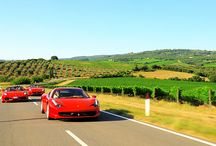 Travel: Italy / by Derek Brouwers