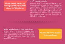 Presupuesto / #Presupuesto2015 del Servicio Nacional de la Mujer