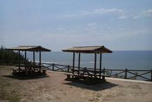 Mar   Ocean
