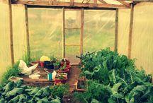 Jardineria. Permacultura.