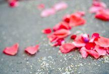 Petali / Tappeti dal design moderno con motivi floreali colorati
