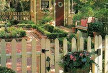 backyard / by Lisa Stead