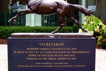SECRETARIAT <33 LOVE THIS HORSE