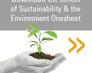 sustainability in schools