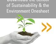 sustainability in schools