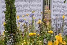 Chelsea Flower Show 2015 RHS