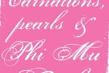 Phi Mu  / by Taylor Gurley