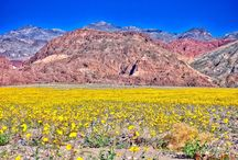 Death Valley / Death Valley is a special desert landscape
