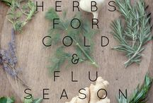 Herbs for cold &flu