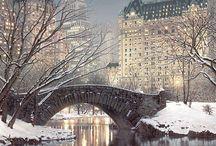 NYC Christmas dream