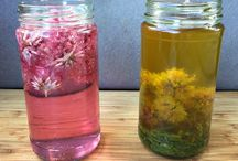 Infusions / Recipes for oil or vinegar infusions